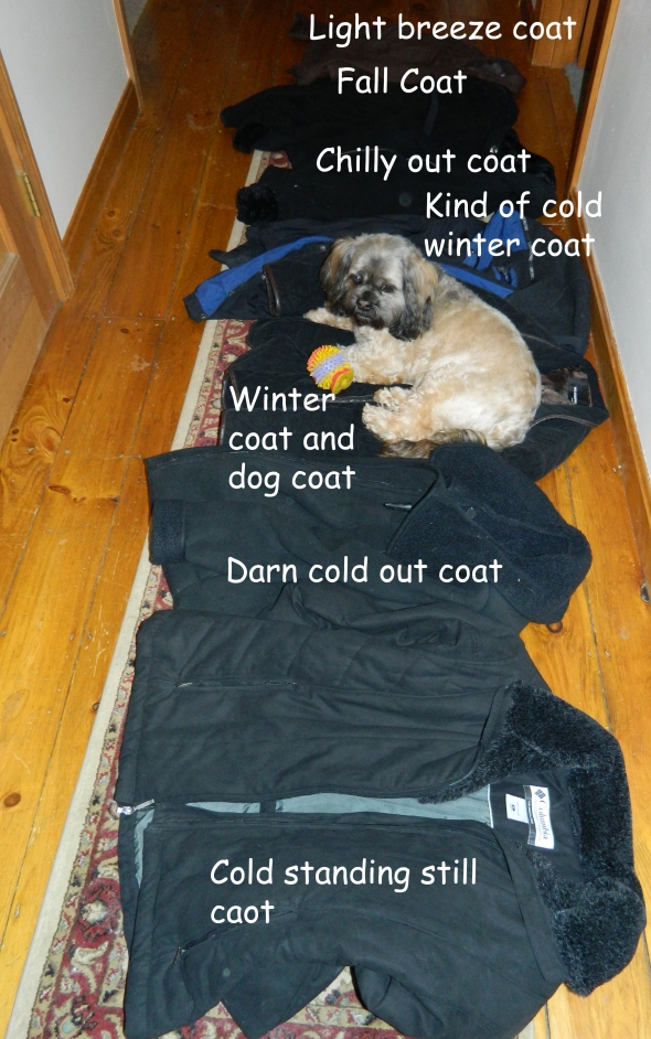 New Hampshire coat must haves.