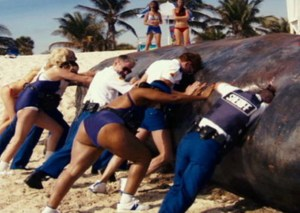 "if you want to know why the whales aren't just ""blown up"" rent the Reno 911 in Miami movie."
