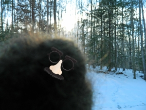 I wonder if perhaps Bigfoot is a master of disguise? (yes I joke around like this with the club)