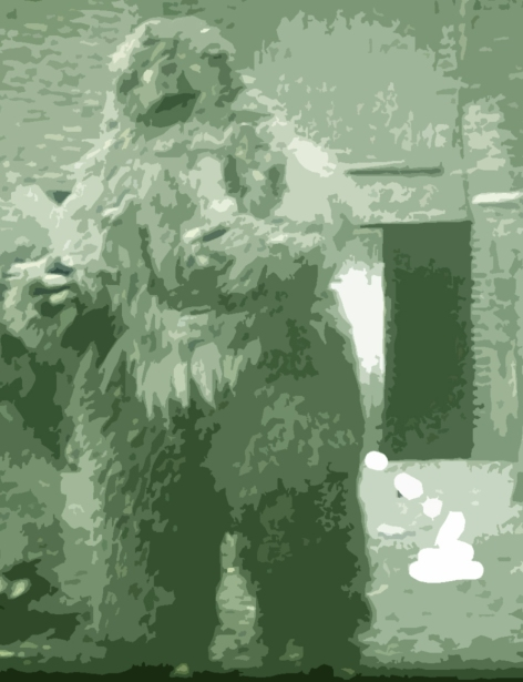 If Bigfoot is a real creature, he poops.  Our job, to collect that poop with as little contamination as possible!