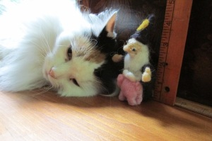 Randi, a flying pig and Moxie
