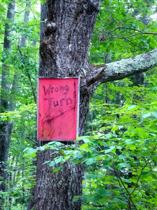 this means, RIGHT WAY TO GO!! You are almost at one of the best Bigfoot/geocache sites in New Hampshire!
